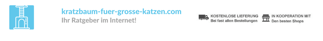 kratzbaum-fuer-grosse-katzen.com